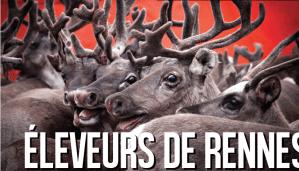 Éleveurs de rennes