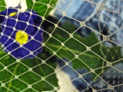 ecru russian netting with primrose