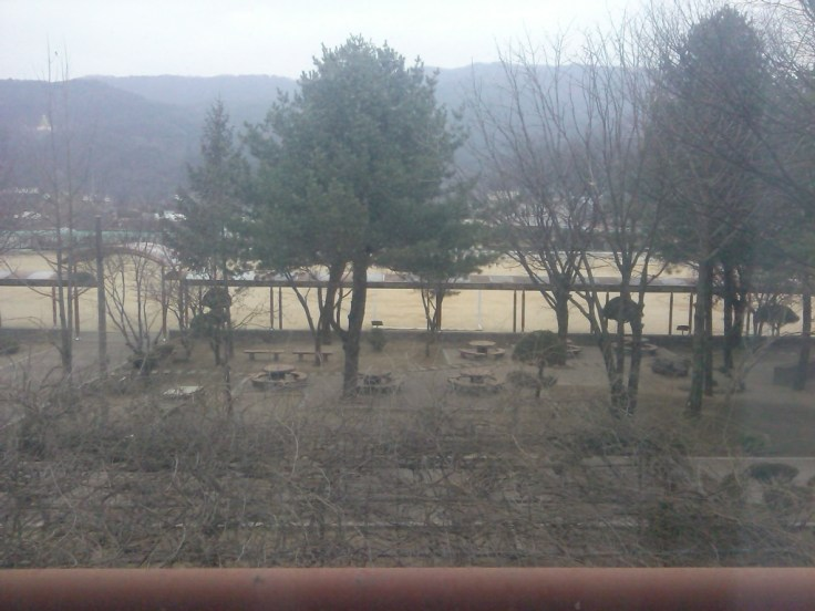 The view from my apartment window when I arrived in Wasu.
