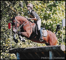bashkir curly doing cross country portion of eventing