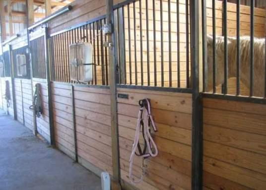 modern stalls minimize contact between horses