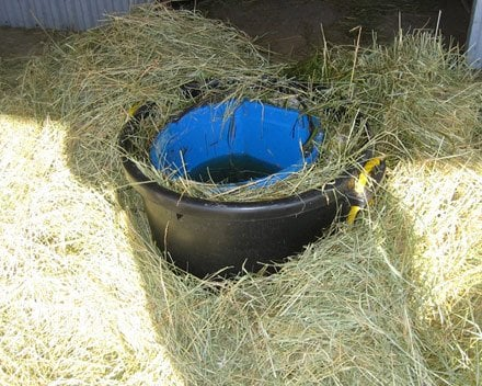 Preventing Horse Water in Buckets, Troughs, and Stock tanks from Freezing