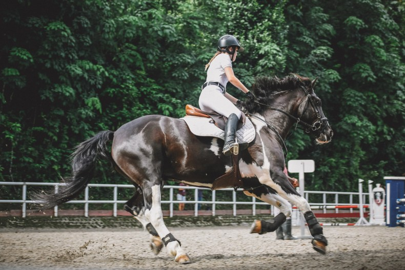 A balanced canter transition will feel like liftoff, while an unbalanced transition may send you lurching forward unpredictably.