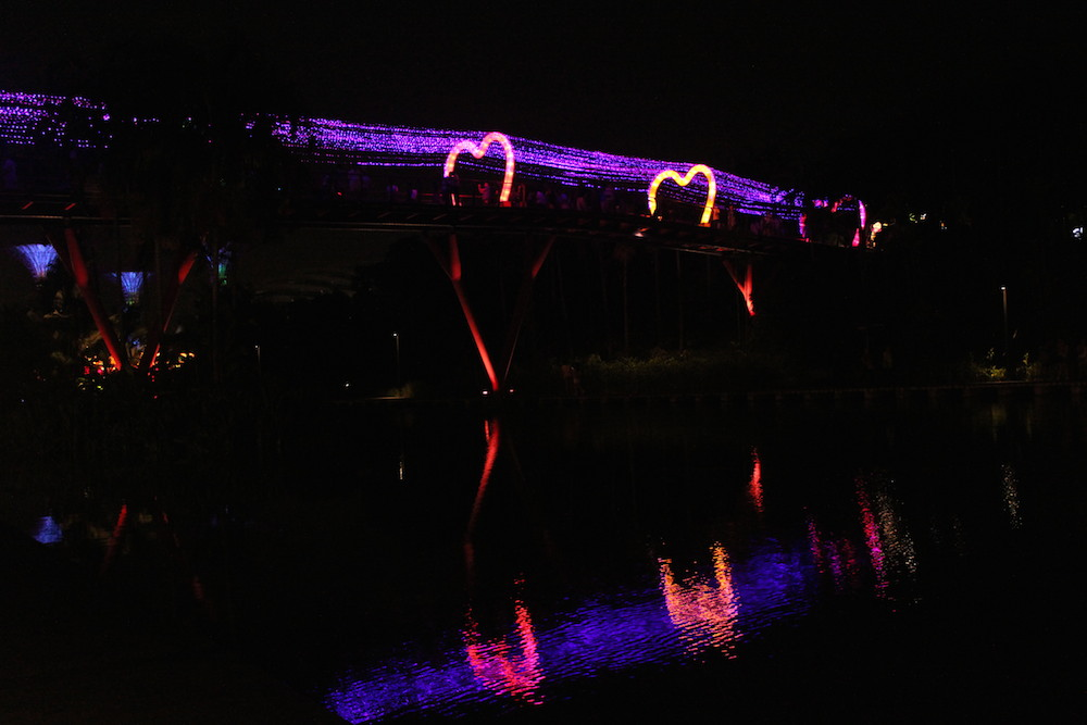 dragonfly bridge