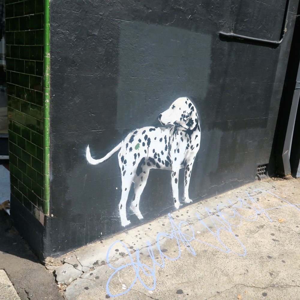 Stenciled Dalmatian Dog on wall Surry Hills Sydneystreetartsydney