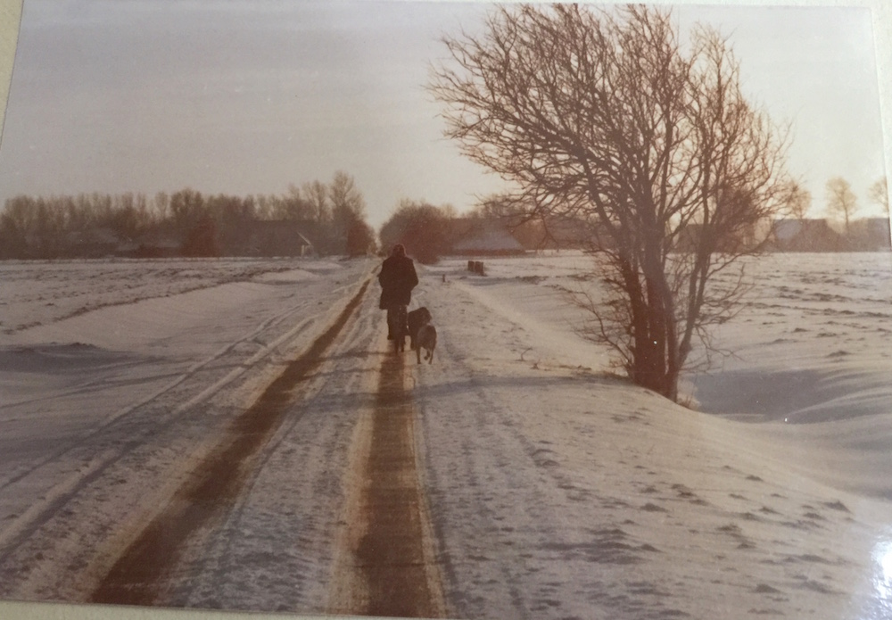 Woman biking in Groningen countryside |curlytraveller.com
