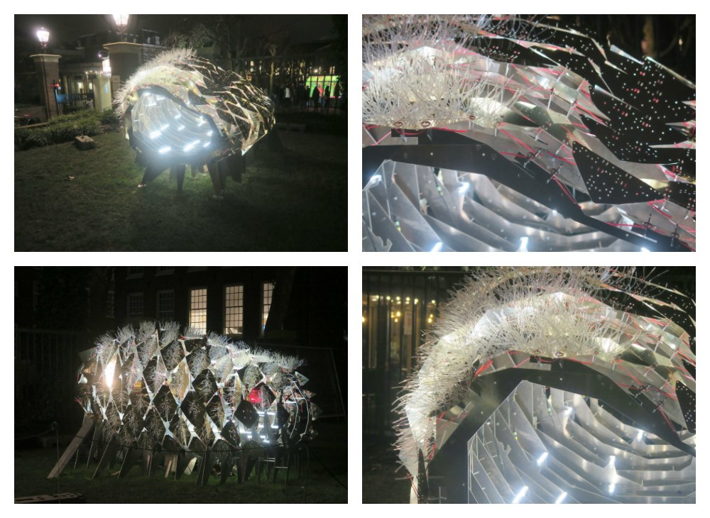 Flowering Phantasm at Illuminade Amsterdam |curlytraveller.com