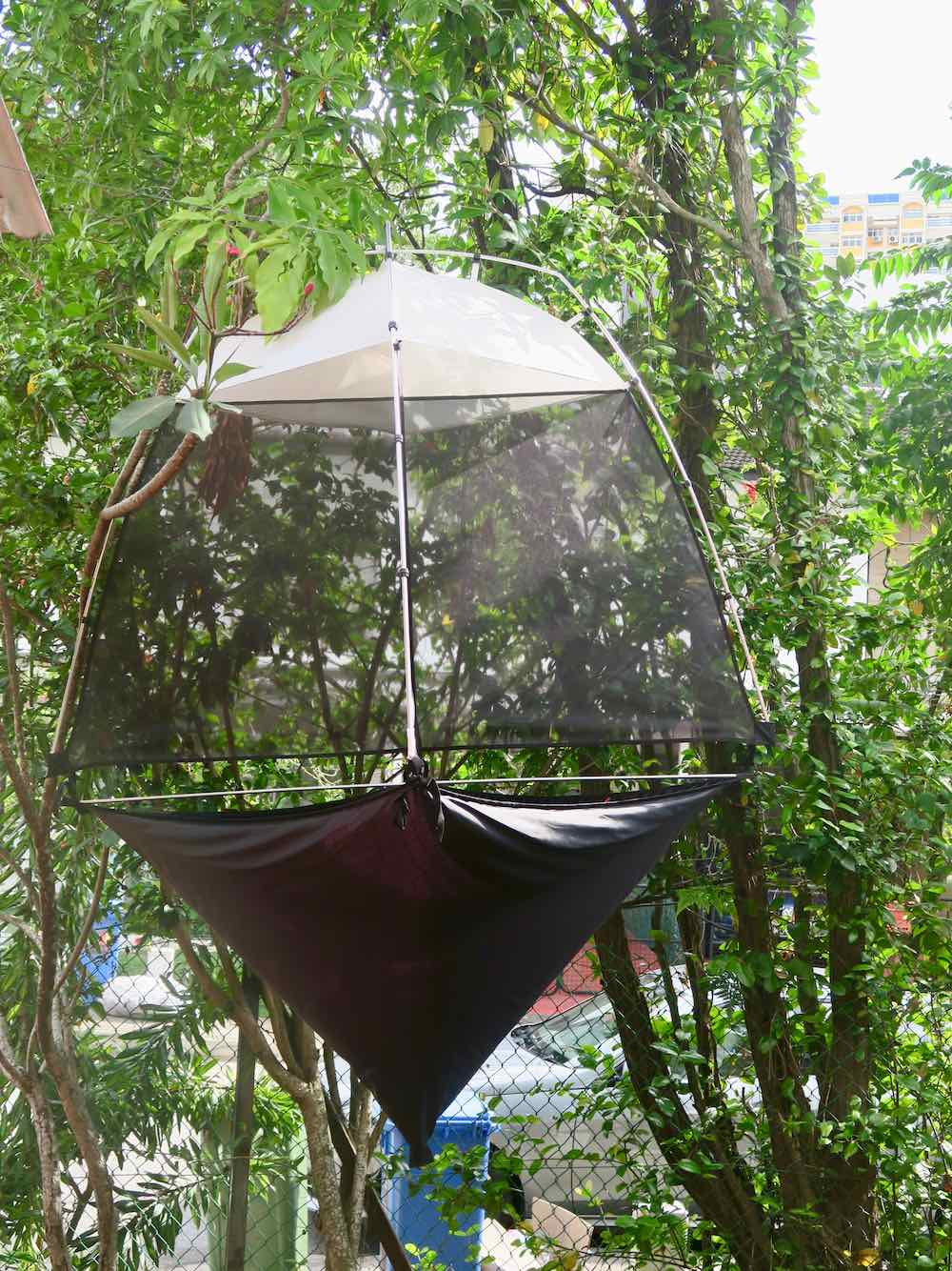 Insect trap at Bizarre Honour Singapore |curlytraveller.com