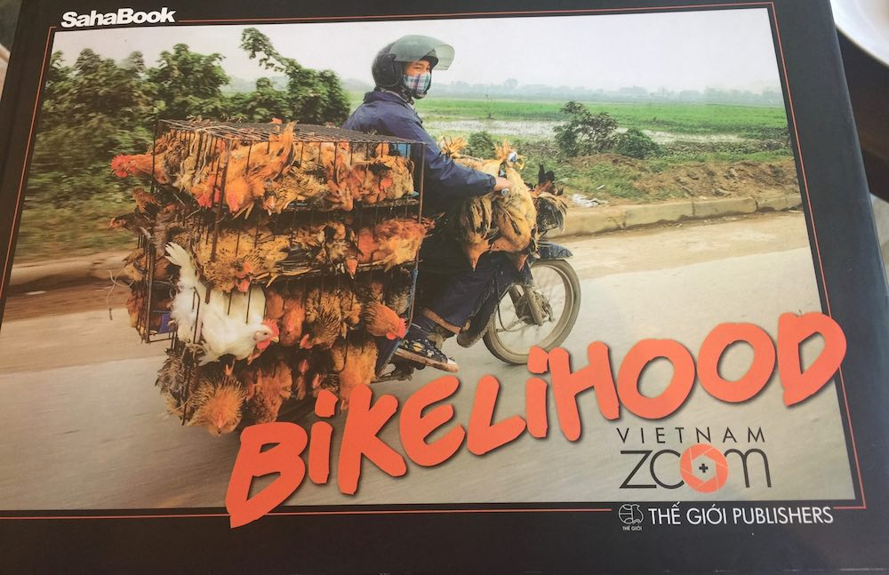 Cover of book Bikelihood |curlytraveller.com