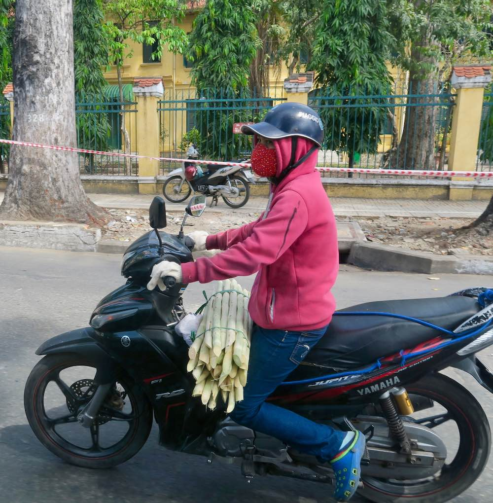 Transporting bamboo or sugarcane on a bike |curlytraveller.com