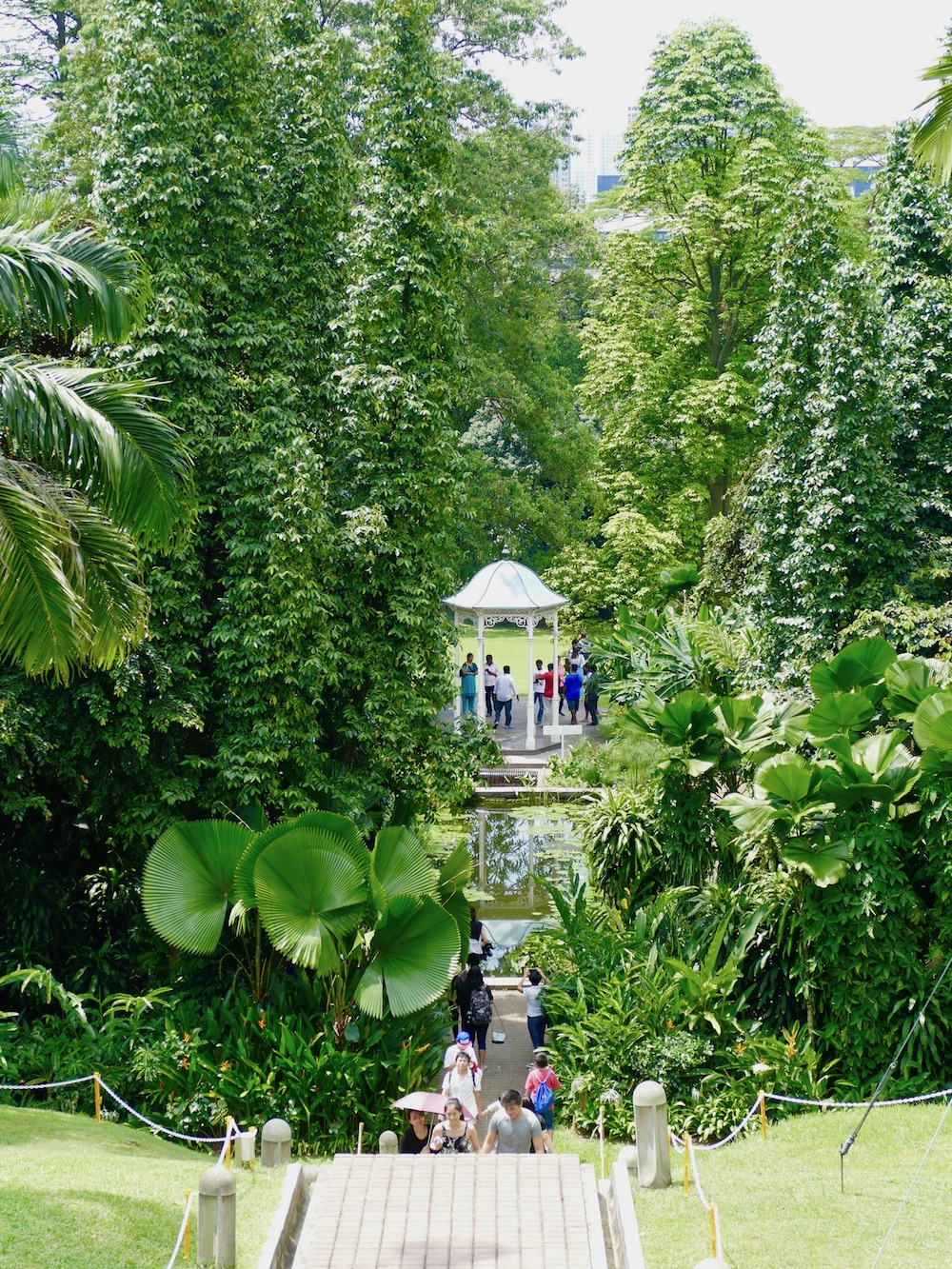 Pretty see-through in the gardens of the Istana |curlytraveller.com