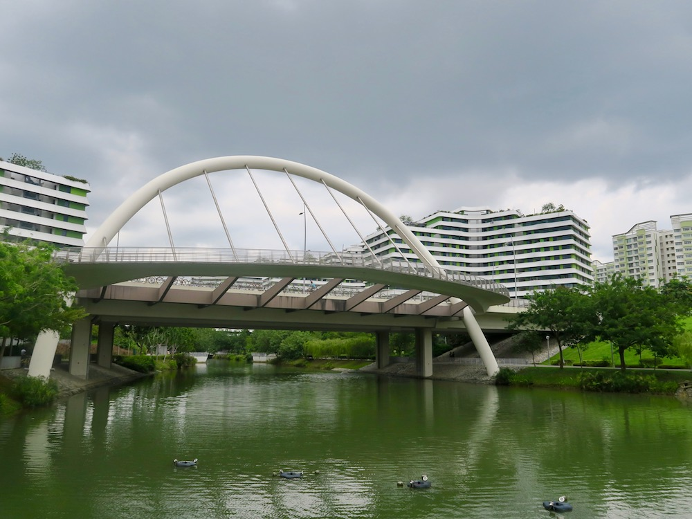 Pretty bridge in Punggol |curlytraveller.com