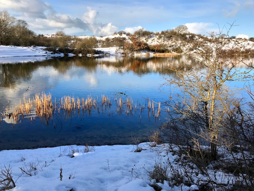 Winter and snow at De Oosterplas in the Kennemerduinen |curlytraveller.com