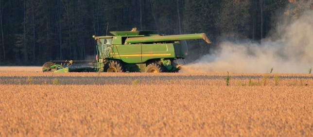 harvest-1033756_1280