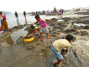 Environment Ministry Launches Pilot Project Blue Flag for Beach Clean-up