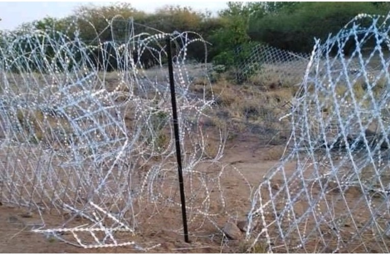 De Lille confirms 'criminal elements' have damaged newly installed R37m border fence