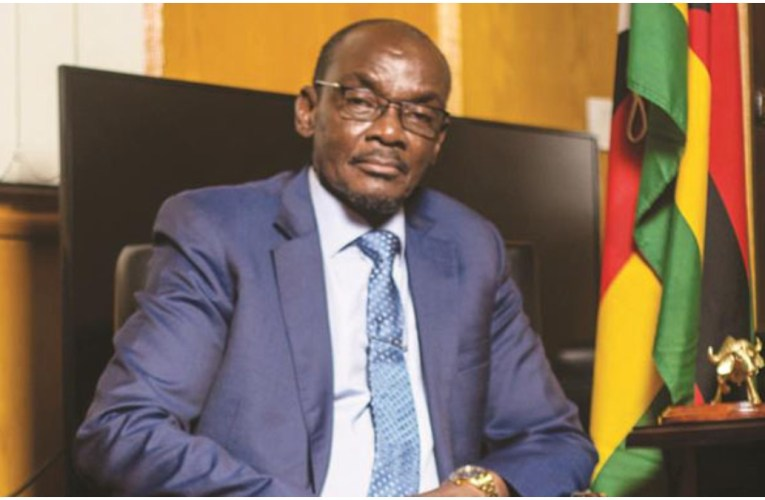 White man didn't teach us how to run economy – Zimbabwe VP