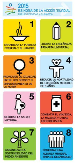 países subdesarrollados objetivos de desarrollo del milenio