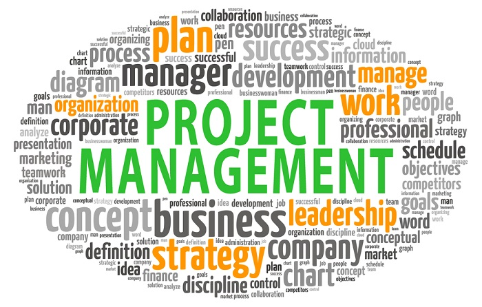 Requisitos para ser project manager