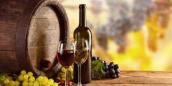 Contenido del curso de enología y cata de vinos