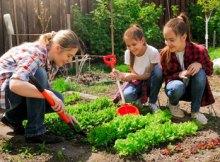 cursos de jardinería gratis