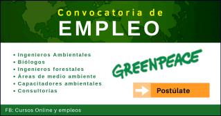 Greenpeace portal de empleo