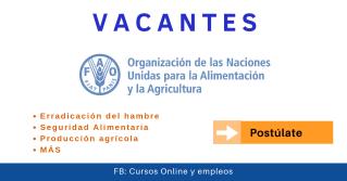 Vacantes FAO en Seguridad Alimentaria