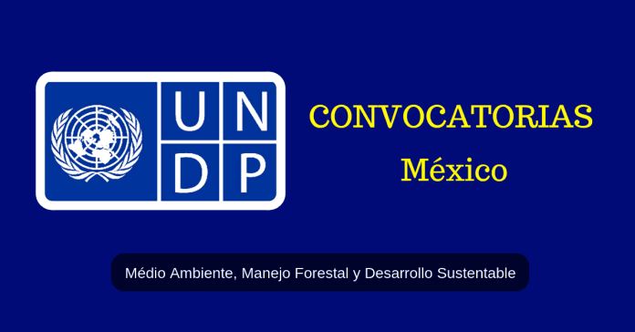 PNUD vacantes México MEdio ambiente y manejo forestal