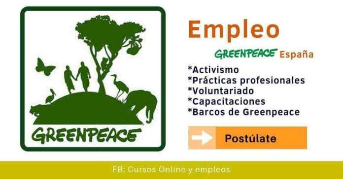 Greenpeace vacantes ong