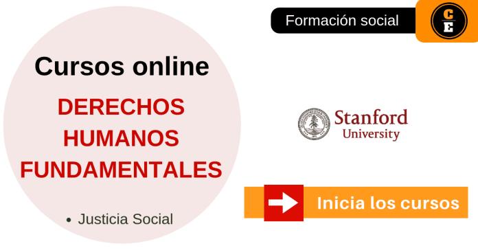 derechos humanos fundamentales curso online