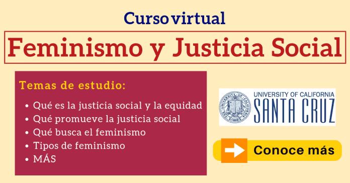 La Justicia Social Feminismo curso a distancia