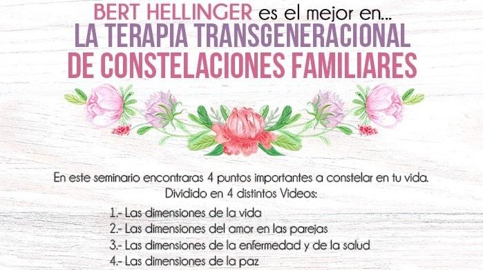 terapia sistemica, escuela de constelaciones familiares, formacion en constelaciones familiares argentina, que se puede constelar, como constelar a la pareja, como constelar uno mismo,