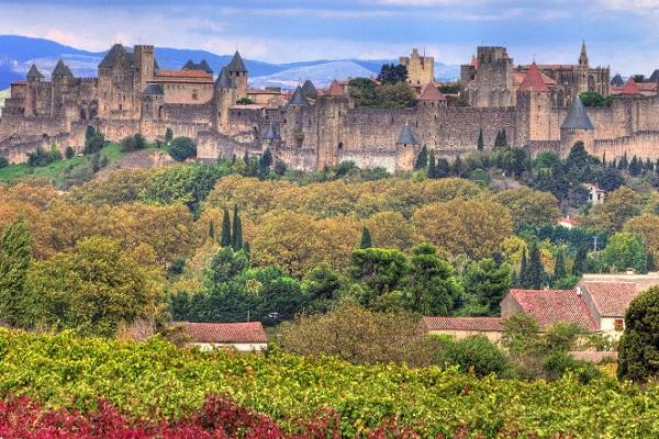 Wijnworkshop Languedoc Roussillon