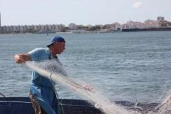 Folding the nets