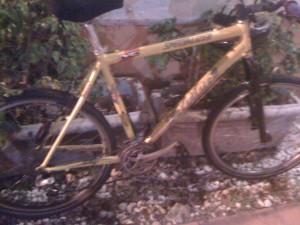My Mountain bike