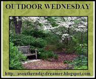 Outdoor-Wednesday-logo