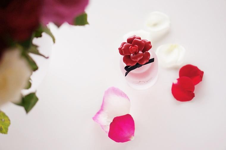 dolce gabbana dolce rosa excelsa 3 - Dolce & Gabbana Dolce Rosa Excelsa