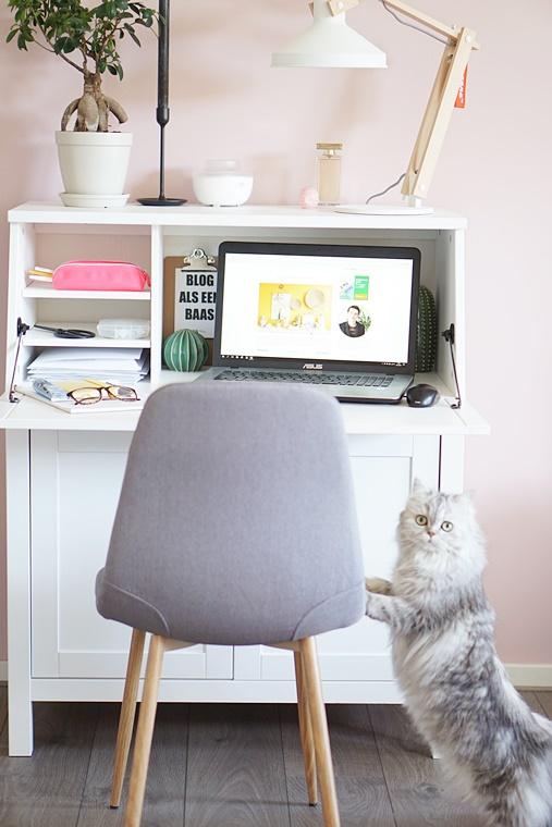 home office lente 2018 2 - Interieur | Mijn home office #1