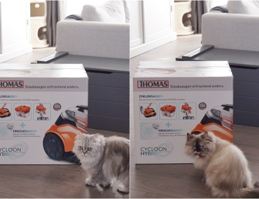 thomas cycloon hybrid family & pets stofzuiger review/ervaring