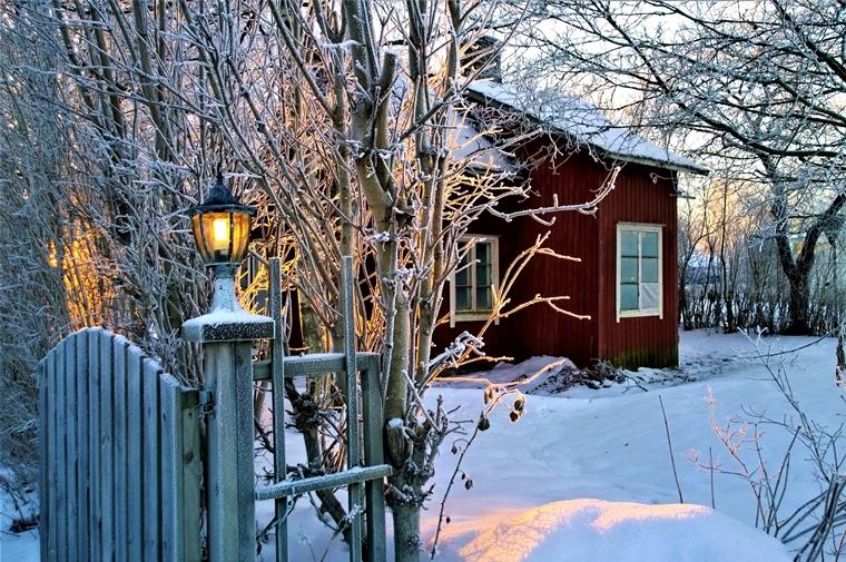 tuin winterklaar maken tips 3 - Home | Tips om je tuin winterklaar te maken