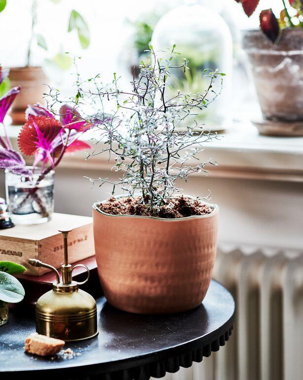 ikea zomer collectie 2020 6 - Home | IKEA zomer collectie 2020