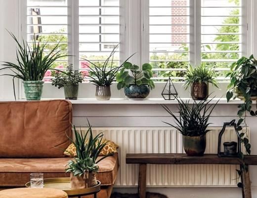 raamdecoratie trends inspiratie