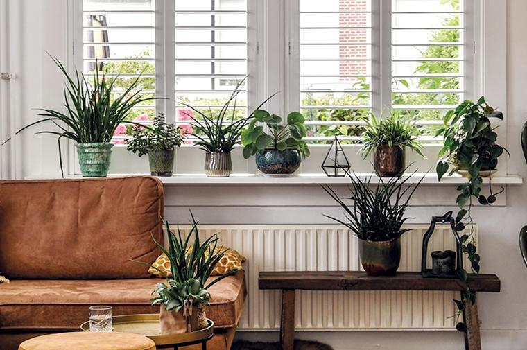 shutters raamdecoratie woonkamer 1 - Interieur | Mooie raamdecoratie inspiratie