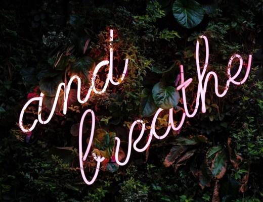 goede ademhaling tips en oefeningen (The Breathwork Movement - Nikki van der Velden)