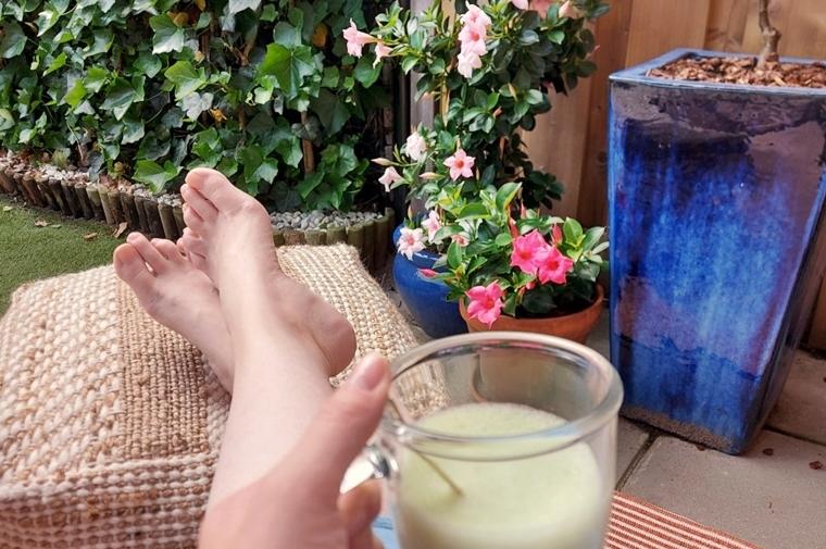 sundaville mandevilla plant onderhoud 6 - Love it! | Zomer in je tuin met de kleurrijke Sundaville