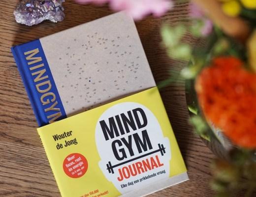 Mindgym Journal - Wouter de Jong (recensie/review)