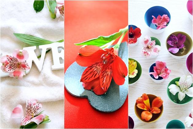 alstroemeria2 - Fleur je huis op met een bos Alstroemeria