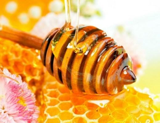 honing4 - Beauty Food | Honing