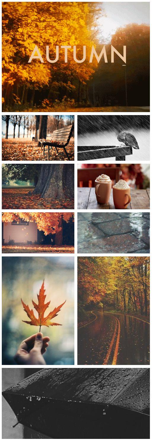 inspiratie herfst interieur 3 - Inspiratie | Herfst in je interieur