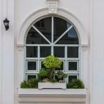 Arch window with bonsai decoration